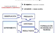 Aplicación del método científico en biología